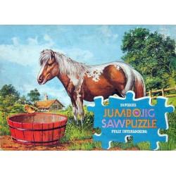 1026 Jumbo - Paard in wei...