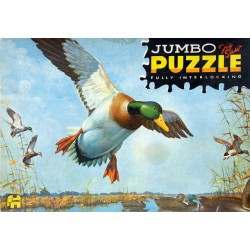 2053 Jumbo - Vliegende eend...