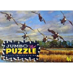 2003 Jumbo - Ganzen boven...